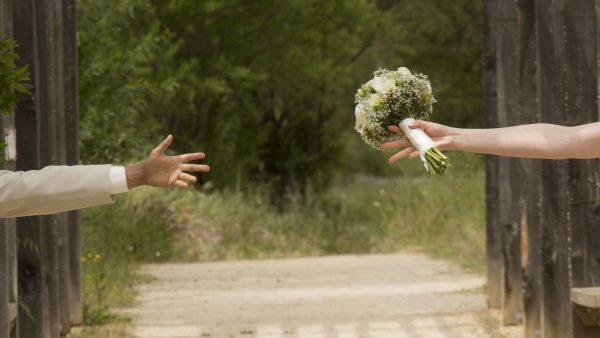 Nulidad Separación Divorcio